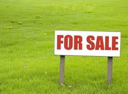16 MARLA PLOT FOR SALE IN DHA PHASE 8
