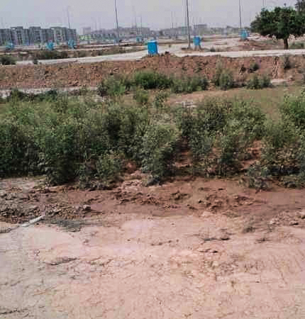 5 MARLA PLOT FOR SALE IN DHA PHASE 9 PRISM